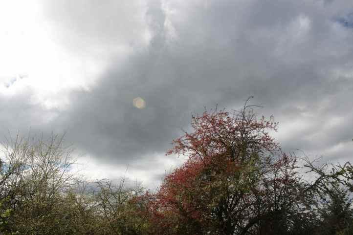 Ominous clouds032516